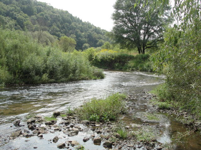 70 Acres/West Fork Trout Stream